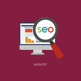 Formations SEO