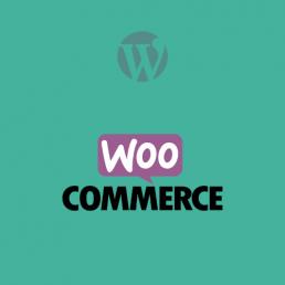 Formation wordpress WooCommerce